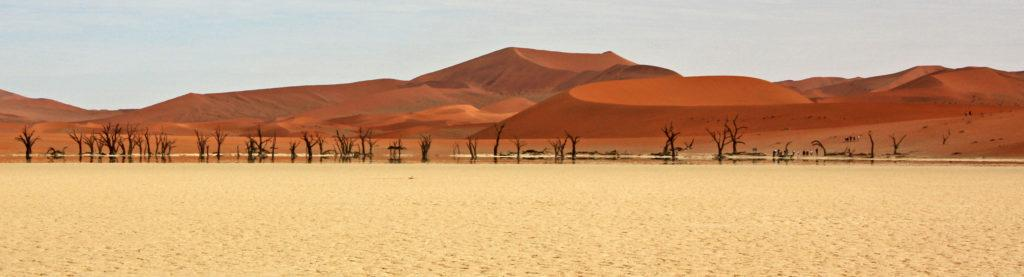 Panoramic view of the ancient trees in Namibia's Dead Vlei and dunes in the distance