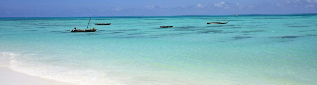 Four dhow sailing boats in the shallow waters of the Indian Ocean on Zanzibar